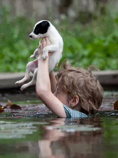 Serbia flood kid saving puppy.