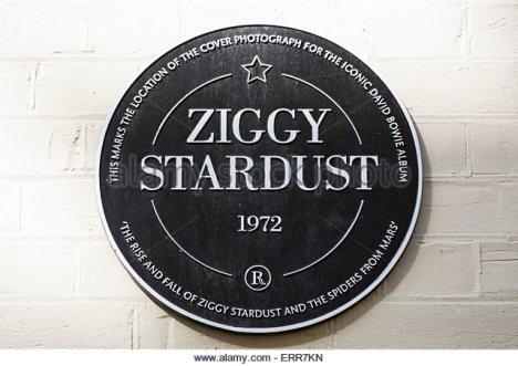 zig plaque