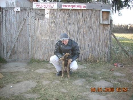2nd-puppy