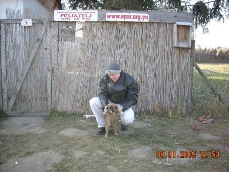 3rd-puppy