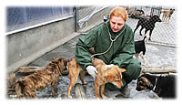 aa-vet-nurse-tends-to-dogs