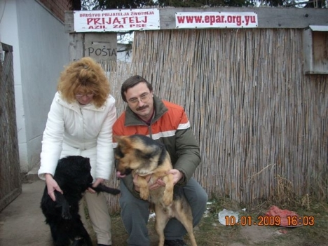 borko-beckica-new-owners