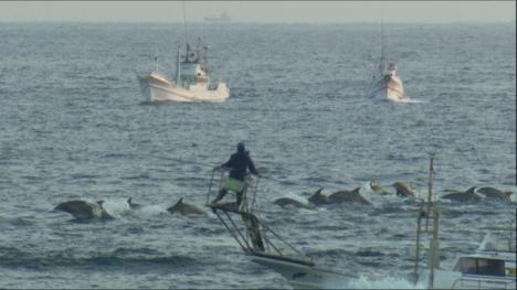Drive Fisheries Japan