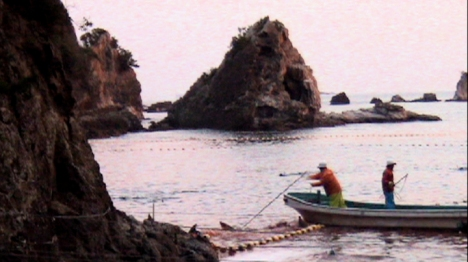Secret Dolphin Cove in Taiji Japan, site of annual dolphin slaug