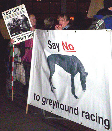 greyhound-demo-london