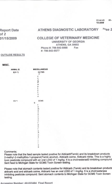 vet-report1