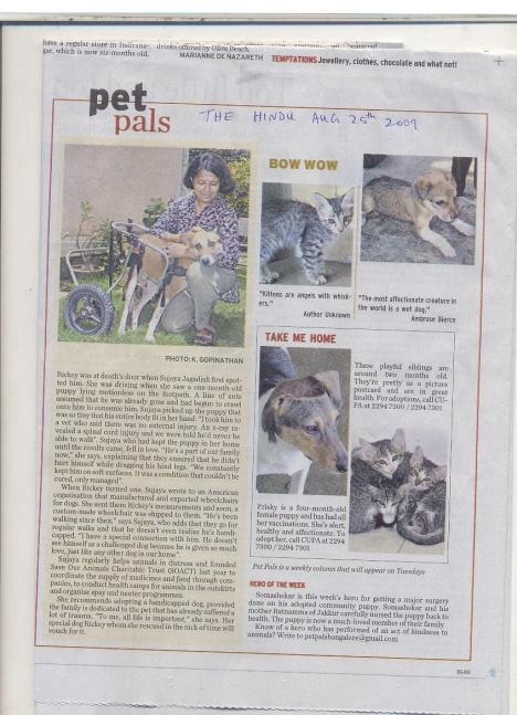 India article