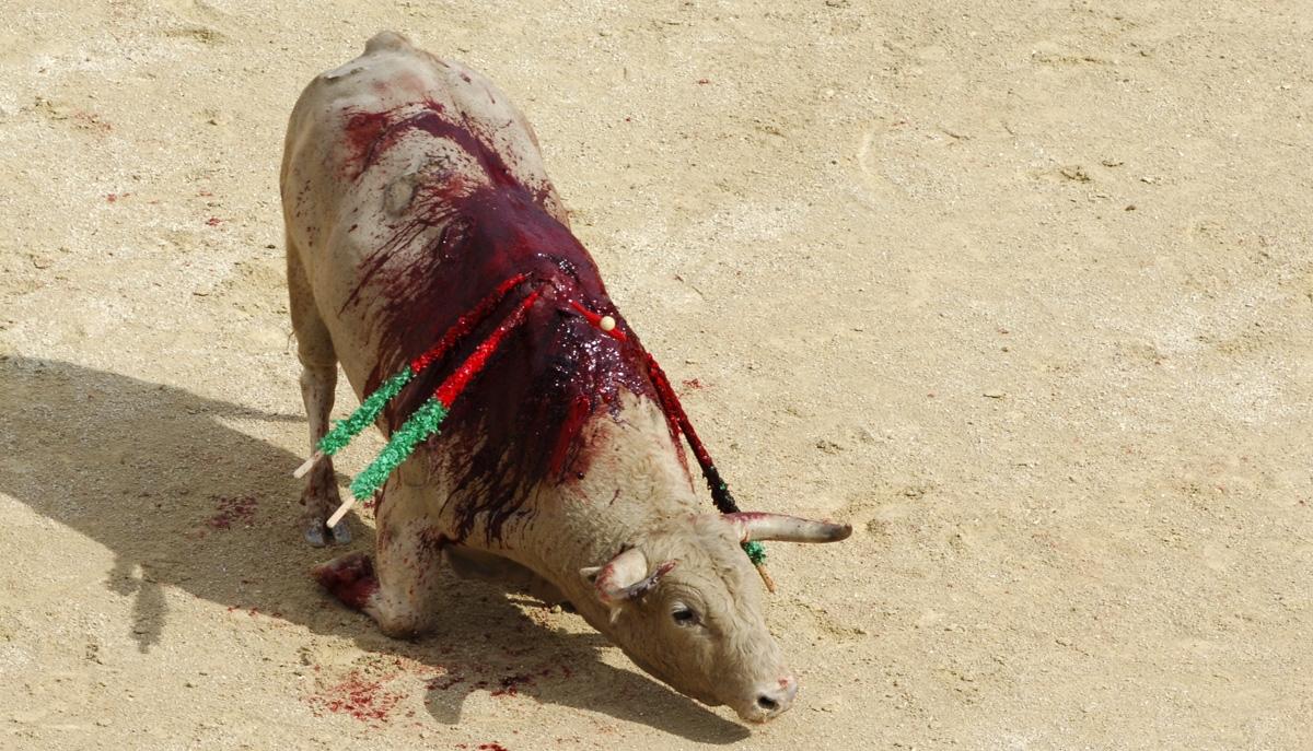 how to make bullfighting baggies