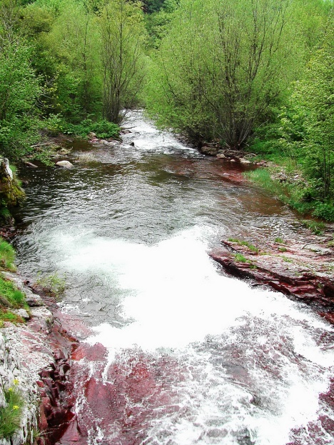 Toplodolska river, Stara planina