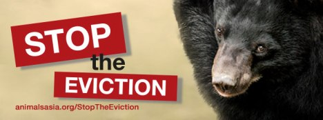 stop eviction banner