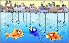 overfish1