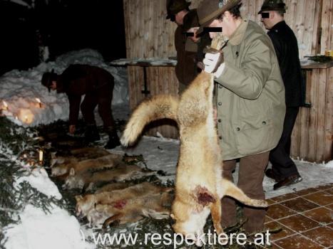 fox week 2013 6