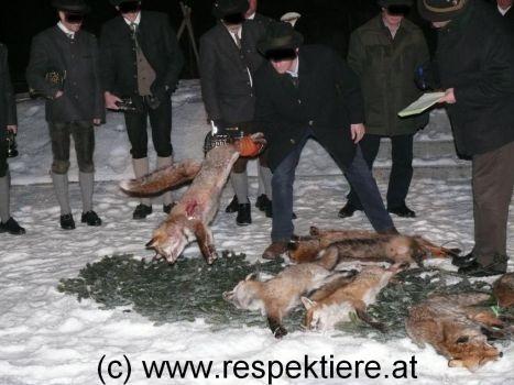 fox week 2013 7