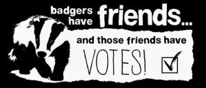 badgers animal aid.org.uk
