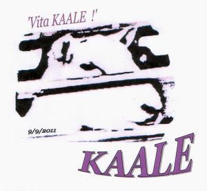 Vita KAALE Logo 9 9 2011