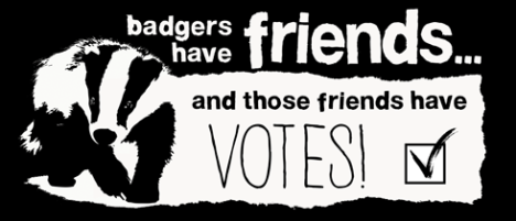 badgers animal aid.org.uk