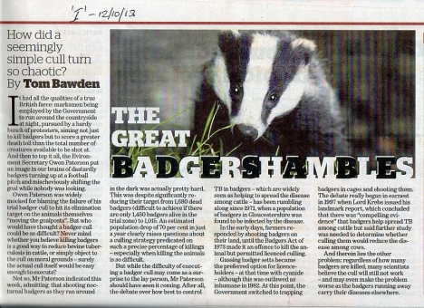 Badgershambles