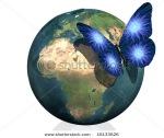 earth butterfly
