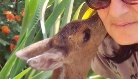nani kiss