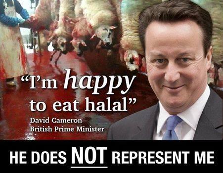 David Cameron Halal