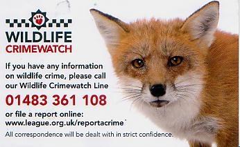 wildlife crimewatch card