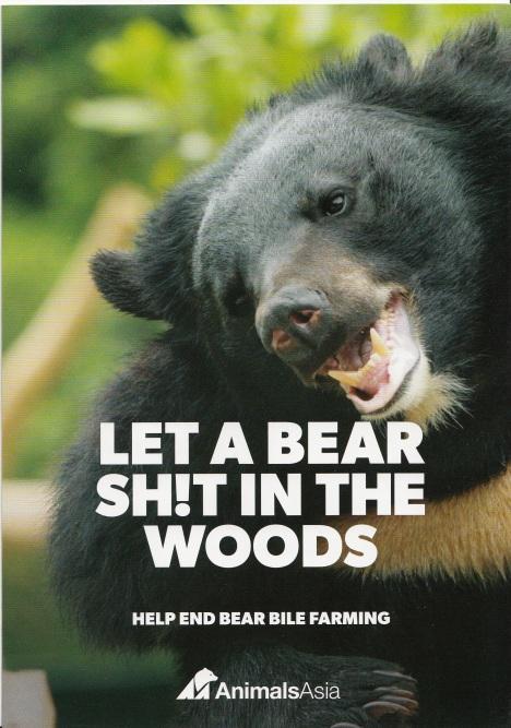 bear1_NEW