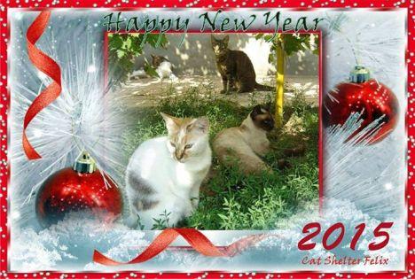 felix new year