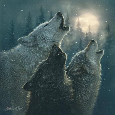howlingwolvesmoon