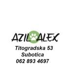 Azil Alex