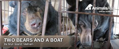 AA rescue boat