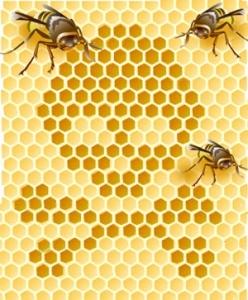 bees win monsanto