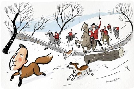 cameron hunt fox