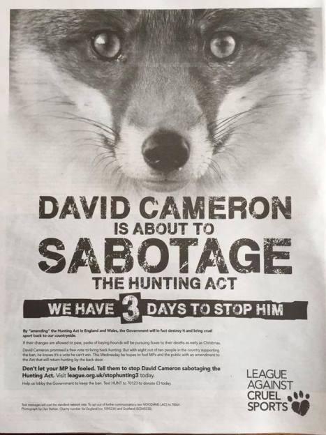 cameron hunt poster