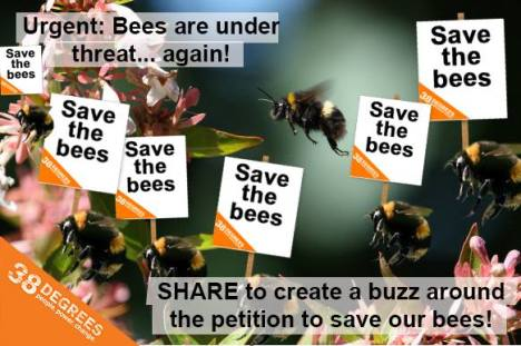 save bees 38