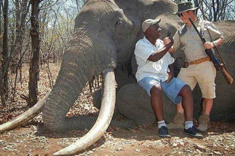 German elephant hunter