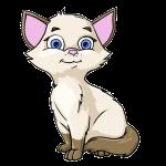 cartcat 1