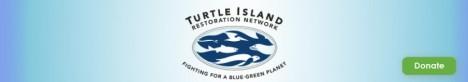 cropped-turtle-island.jpg