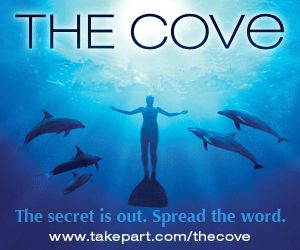 The cove advert