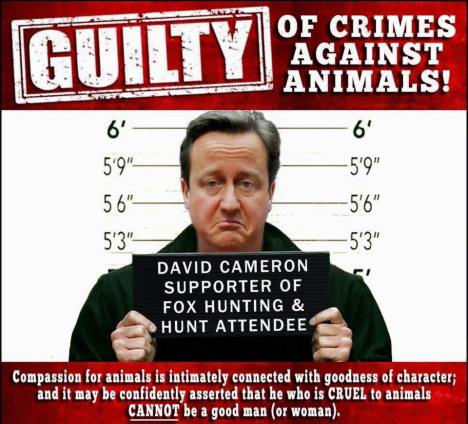 cameron guilty