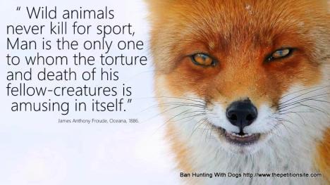 fox saying