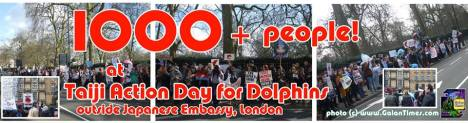 london taiji feb