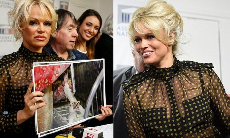 Pamela Anderson (L), actress and animals rights defender, Michel Vandenbosch (C), co-founder of the Belgian animal welfare organisation, Global Action in the Interest of Animals (GAIA), and former Miss France Delphine Wespiser (R) attend a news conference at the National Assembly to protest the force-feeding of geese used in the production of foie gras, in Paris, France, January 19, 2016.    REUTERS/Philippe Wojazer