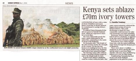 kenya ivory_NEW