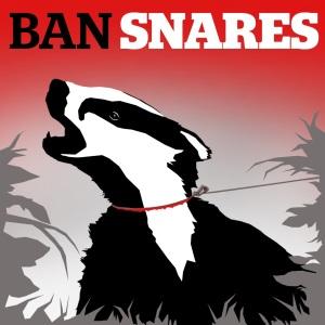 LACS Ban Snares