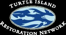turtle logo