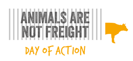 animals not freight