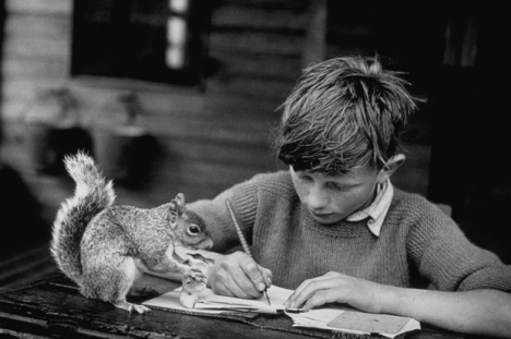 1944: A boy doing his school lessons watched by his pet squirrel. (Photo by Hulton Archive/Getty Images)