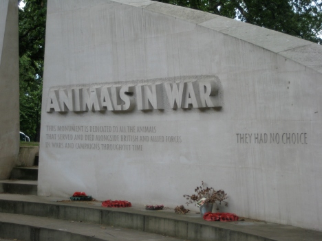 animals-in-war-4