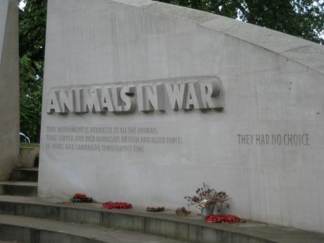 animals-in-war-4
