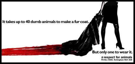 dumb-animals-fur-coat